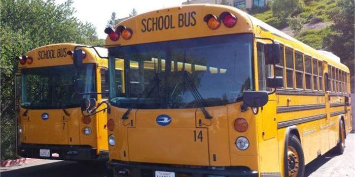 l3-shot-of-buses-e1499995737737